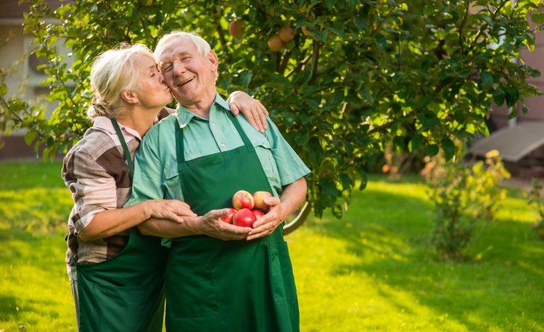 Couple of senior gardeners